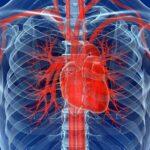 Обследование сердечных клапанов на МРТ